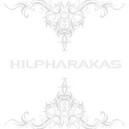 Black and White Skull Ear Studs