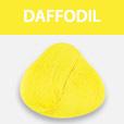 Ergas juuksevärv Daffodil