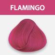 Ergas juuksevärv Flamingo Pink